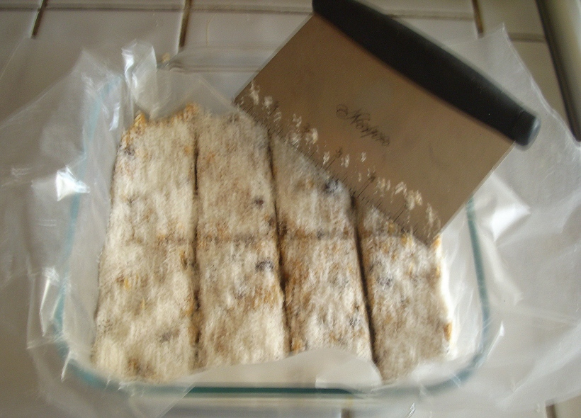 coconut bars, gluten free, vegan, short stories