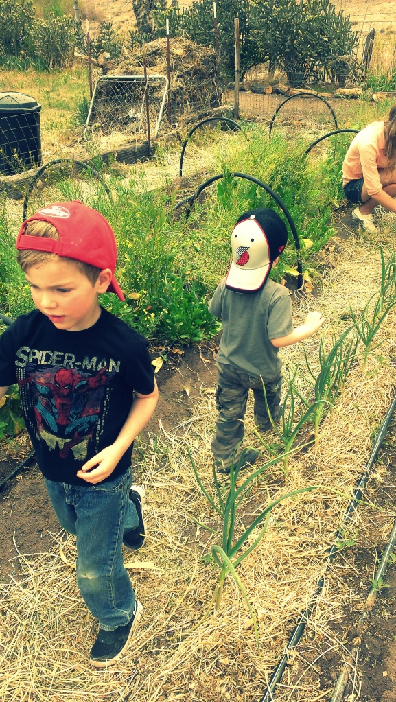nephews, gardening