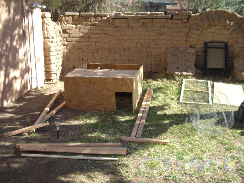 chicken coop, building, chickens