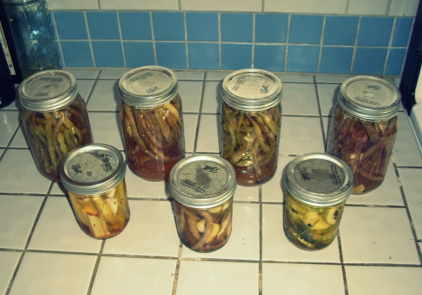 green chile, pickling, new mexico